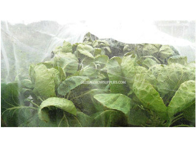 Professional Insect Exclusion Mesh 6 x 6 metre - Vegetable Crop Protection