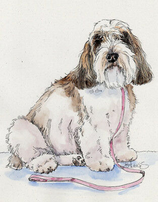 PETIT BASSET GRIFFON VENDEEN Orig Watercolor on Ink Print Matted 11x14 R 2 Frame