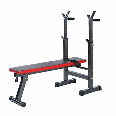 Adjustable Sit Up Weight Bench Lifting Chest Press Folding Barbell Dip Station
