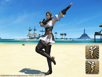 FINAL FANTASY XIV FFXIV FF 14 Item Emote Black Ranger Pose A and B -Code not GIL