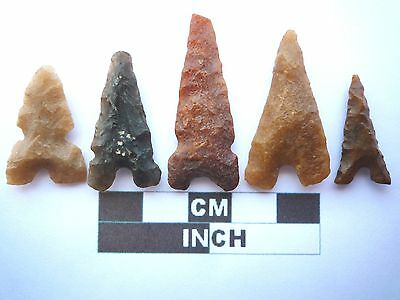 Neolithic Arrowheads x 5, Eiffel / Moroccan Points, Genuine - 4000BC  (T048)