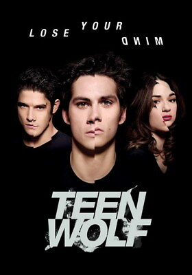 "026 Teen Wolf - MTV Blood Action Thriller TV Show 14""x20"" Poster"