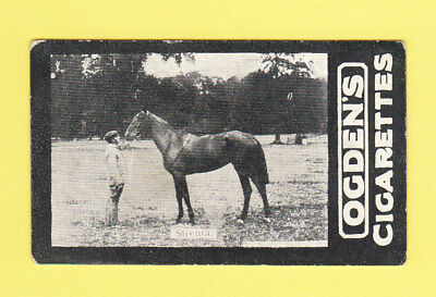 Horse Racing - Ogdens Tabs - Leading Favourites Of The Turf -  Sirenia  -  1901