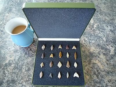 20 x Quality Miniature Neolithic Arrowheads in Display Case - 4000BC - (P011)