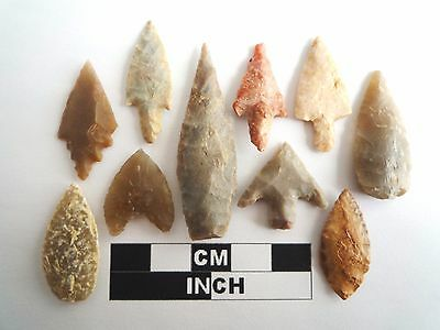 Neolithic Arrowheads x 10, High Quality Selection of Styles - 4000BC - (1073)