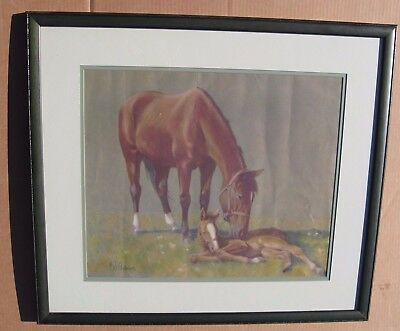 CW C.W. Anderson Signed Framed Matted Print Color Crooked Colt Cover Mare & Foal