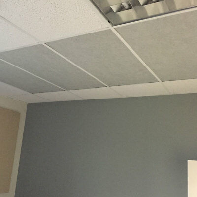 PACK OF Acoustical Ceiling Tiles WhiteGray X X - 1 x 2 ceiling tiles