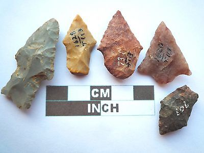 Native American Arrowheads x 5, Genuine Archaic Artifacts, 1000BC-8000BC (Y012)