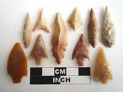 Neolithic Arrowheads x 10, High Quality Selection of Styles - 4000BC - (1084)