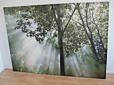 ikea bild leinwand 140 x 200 cm wald motiv mit rahmen. Black Bedroom Furniture Sets. Home Design Ideas