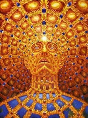 Trippy Alex Grey Abstract Silk Art Print Poster 32''x24''inch 02