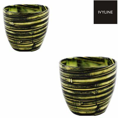 Ivyline Monza Tropical Bamboo Indoor Planter Flower Plant Pot in 2 Sizes