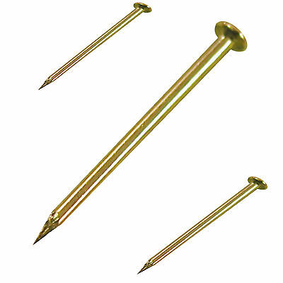 Brass Plated Hardened Picture Pins Nails Hooks Picture Frame Wall Hanging Pins
