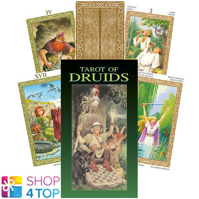 Tarot Of Druids Deck Cards Esoteric Fortune Telling Lo Scarabeo New