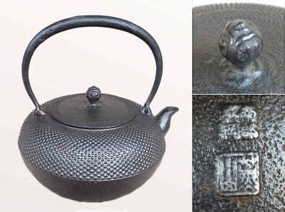 Japanese Antique KANJI old Tetsubin bottle Tea Kettle teapot Chagama #0045