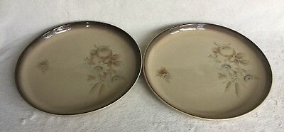 "2 X Denby Memories/Images 10"" Dinner Plates Very Good Condition"