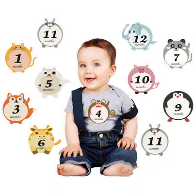 12pcs Baby Stickers for First Year Boy/Girl 1-12 Month Milestone Belly Stickers