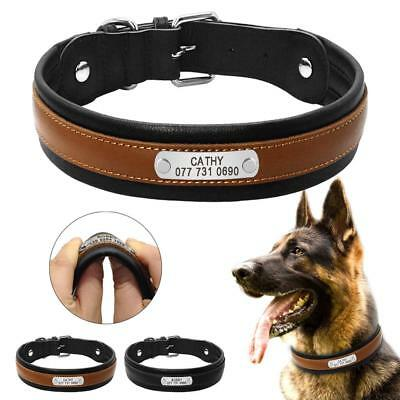 Dog Collar Personalized Customized Dogs ID Inner Padded Leather Pet Engraving