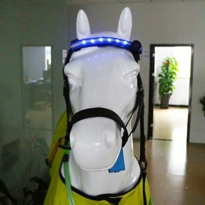 LED Horse Head Straps Night Visible Paardensport Equitation Multi-color Optional