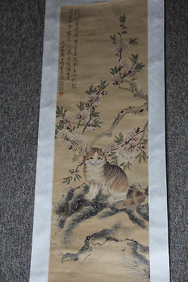 Fine Chinese Antique Painting Scroll With Cat