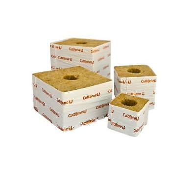 "8 Rockwool 3"" Inch x8 Big Hole - Cultilene Rockwool Cubes 8 Pieces Large Hole"