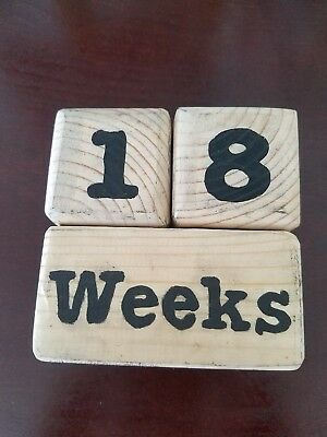 Baby Age Pregnancy Weeks Wooden Blocks Photo Photography