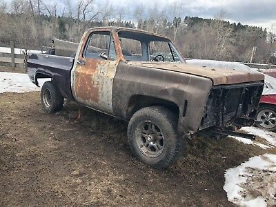 1976 Chevrolet Other Pickups  1976 Chevy K10 truck c10 s10 No reserve