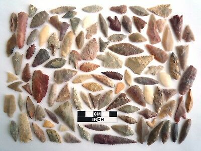 Neolithic Arrowheads x 100, Selection of Styles and Sizes - 4000BC - (1094)