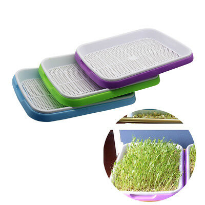 1 Set Double Layer Bean Sprouts Growing Plate Seedling Planting Tray Green Veg