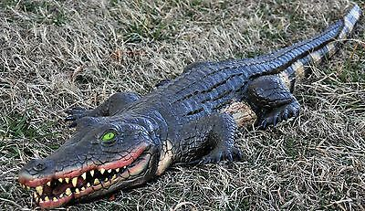 Halloween ALLIGATOR SWAMP FOAM FILLED 4 FOOT Prop Haunted House Decoration NEW
