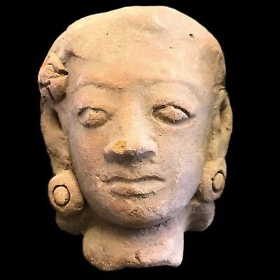 Rare Ancient Indus Valley Terracotta Bust From The Harappa Culture 1200 Bc (3)
