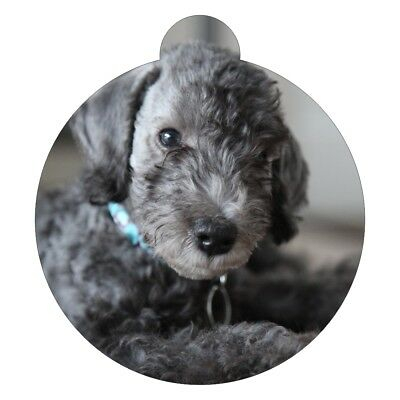Bedlington Terrier Breed Picture Pet ID tag