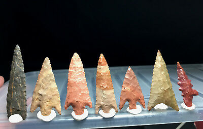 7 first grade neolithic arrowhead !!! museum lot !! 2.12 inches