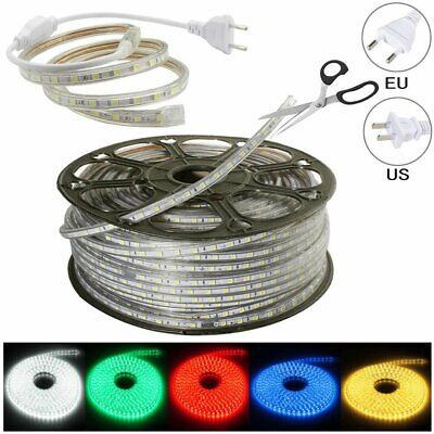 LED Strip 110V/220V 5050 SMD 60LED/M IP67 Waterproof Tape Lights Rope With Plug