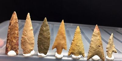 7 first grade neolithic arrowhead !!! museum lot !! 1.85 inches