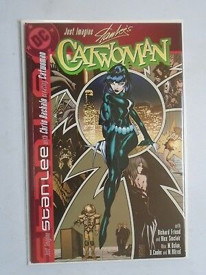 Just Imagine Catwoman #1, 8.0/VF (2002)