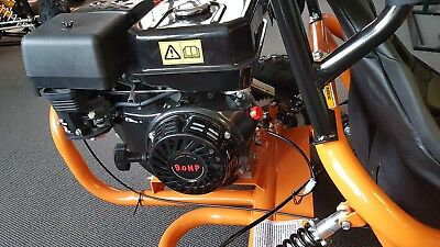 .NEW KIDS SAFE  MODEL, 9HP 270CC. GOKART.ROLLCAGE ,SEAT BELTS ,hand.foot CONTROL