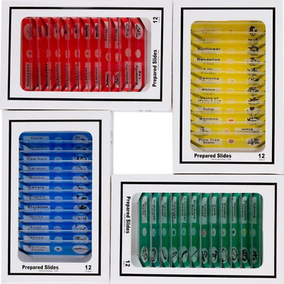 Amscope KIDS 48pcPlastic Prepared Microscope Slides of animals Insects Plants