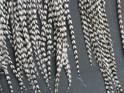 """feather extension 30 long grizzly black and white  feather hair extensions 7-11"""""""
