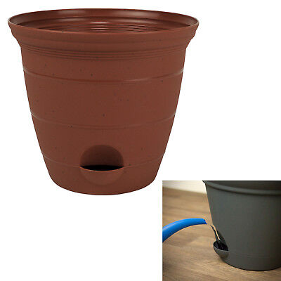Baskets Pots Amp Window Boxes Plant Care Soil