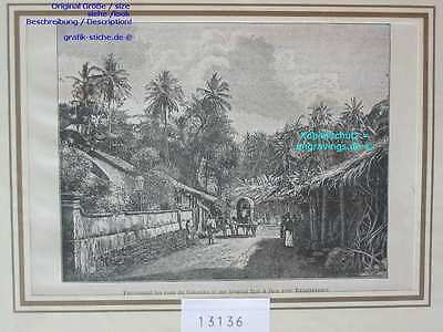 13136-Sri Lanka-Ceylon-COLOMBO-TH-1885
