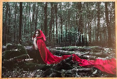 Fine Art Print (ohne Rahmen) - Little Red Riding Hood