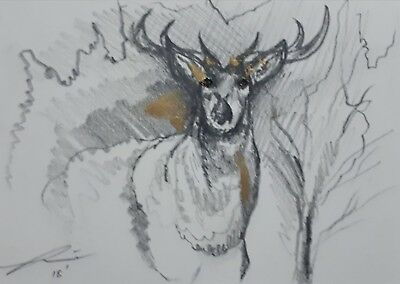 Deer/Reindeer Drawing with Gold Highlights x 1 available Signed