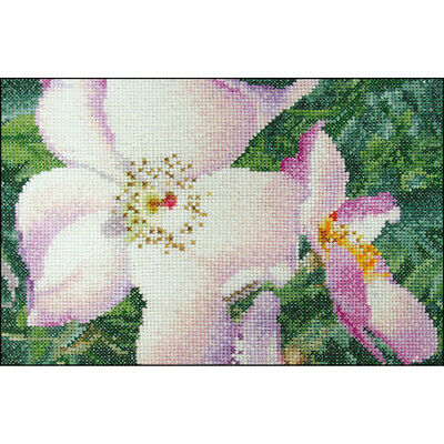 "Thea Gouverneur Rose New Face On Aida Counted Cross Stitch Kit-6.75""X4.75"" 18 Co"