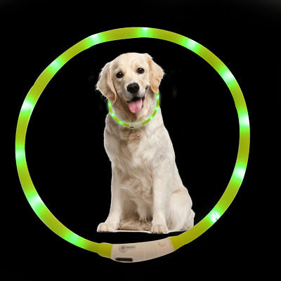 USB Rechargeable Waterproof Pet Collar LED Light Band Dog Night Safety Belt New