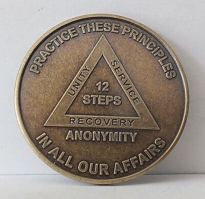 Alcoholic Recovery Principles Medallion Coin Medal Token AA Anonymous -12 Steps