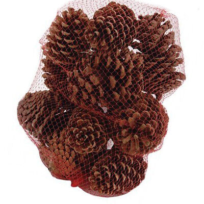 lieomo 10Pcs Large Cinnamon Scented Pinecones Party Living Room Decor