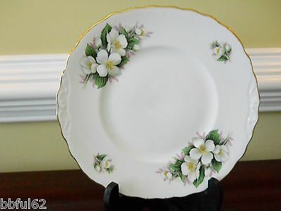 White Plate Dogwood Flower Fine Bone China Gold Gilt Rim Collectible Vintage.