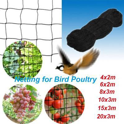 6 Sizes Bird-Preventing Net Anti Bird  Mesh for Tree Garden Fruit Crop Plant
