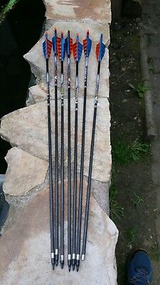 Carbon Pfeile 6xEaston carbon Aftermath 500 spin 28.5 zoll